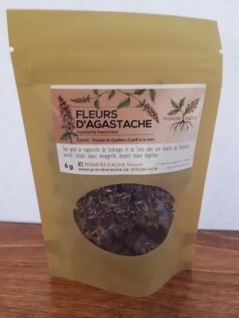 Fleurs d agastache fenouil prendreracine for Agastache cuisine